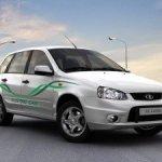 Электрокары АвтоВАЗа успешно преодолели 500 км экологического пробега