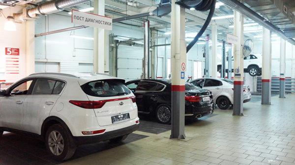 компании Kia и Hyundai